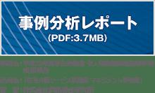 事例分析レポート(PDF:3.7MB)